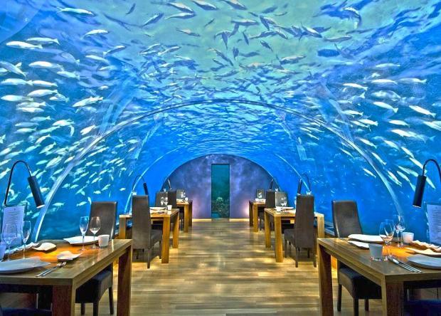 ithaa-underwater-restaurant