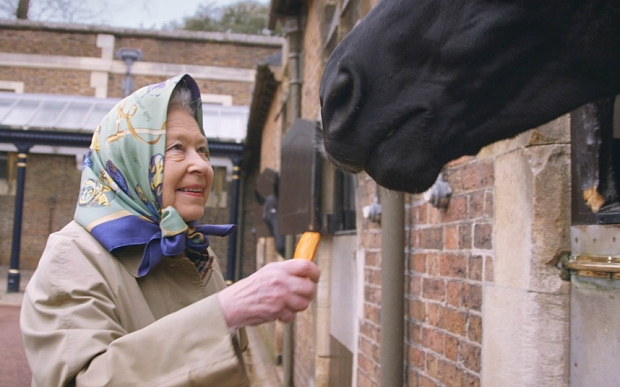"STRICTLY EMBARGOED: FOR PUBLICATION FROM SATURDAY 19TH MARCH 2016  From Oxford Film and Television  OUR QUEEN AT 90 Sunday 27th March 2016 on ITV  Please mention ""OUR QUEEN AT 90 Sunday 27th March 2016 on ITV"" with any use Screen grabs shows: Her Majesty The Queen feeds a carrot to her Canadian horse Elizabeth at the Royal Mews Windsor   She has broken almost every royal record in the book. And now Her Majesty The Queen is approaching a new landmark. To celebrate her 90th birthday, this historic documentary has enjoyed privileged access to the Queen and to those who know her best during the year in which she has become our longest-reigning monarch. We hear from the Prince of Wales and his sons, about the way she has inspired them. We hear from those whom she has warmly welcomed in to the Royal Family, including the Duchess of Cornwall and the Duchess of Cambridge – giving her first interview since her marriage. We meet leaders, celebrities and ordinary people all over the world whose lives have been touched by the most famous woman on Earth. Meanwhile, back at the Palace, it's just business as usual.... © ITV  For further information please contact Peter Gray  peter.gray@itv.com  This photograph is © ITV and can only be reproduced for editorial purposes directly in connection with the  programme OUR QUEEN AT 90 or ITV. Once made available by the ITV Picture Desk, this photograph can be reproduced once only up until the Transmission date and no reproduction fee will be charged. Any subsequent usage may incur a fee. This photograph must not be syndicated to any other publication or website, or permanently archived, without the express written permission of ITV Picture Desk. Full Terms and conditions are available on the website www.itvpictures.com"
