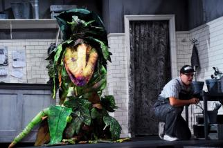 Little Shop of Horrors (2)
