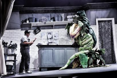 Little Shop of Horrors (8)